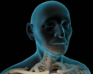 医疗医学脊椎脊柱:三维3D动画制作