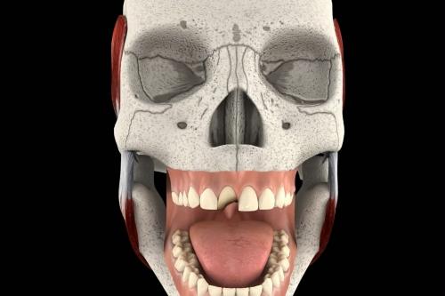 3D牙科补牙动画:3d医学动画设计、医疗动画制作