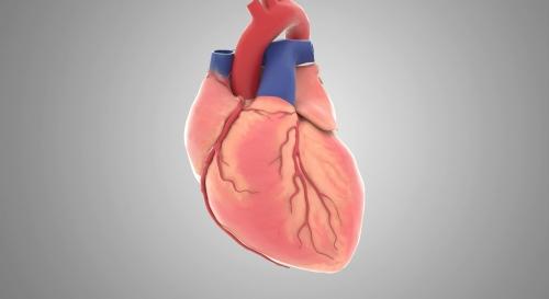 心脏跳动手术医学三维动画制作